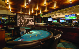 Learn To Win Poker. How To Play Poker Properly: Tips And Secrets Of A Successful Game