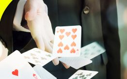 5 Lessons You Can Learn from Online Rummy